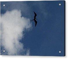 Caribbean Sky Acrylic Print