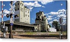 Carlton Michigan Feed Mill Acrylic Print by Pat Cook