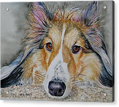 Carly Acrylic Print by Maria Barry