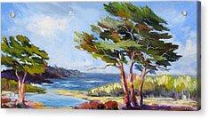 Carmel By The Sea Acrylic Print by Barbara Moore