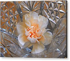 Carnation In Cut Glass 7 Acrylic Print