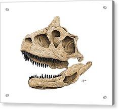 Carnotaurus Skull Acrylic Print