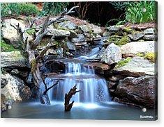 Carolina Mountain Stream Acrylic Print by Al Blackford