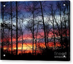 Acrylic Print featuring the photograph Carolina Sunset by Sue Melvin