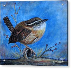 Acrylic Print featuring the painting Carolina Wren by Patricia L Davidson