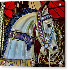 Carousel Horse - 7 Acrylic Print