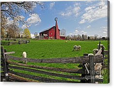 D14d-43 Carriage Hill Farm Metro Park Photo Acrylic Print