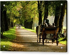 Carriage Ride In Hellbrunn Acrylic Print
