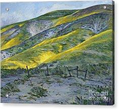 Carrizo Spring Mustard Acrylic Print