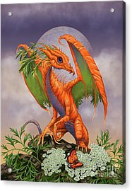 Acrylic Print featuring the digital art Carrot Dragon by Stanley Morrison