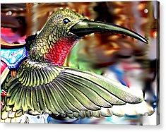 Carrousel Hummingbird Acrylic Print by Diane Merkle