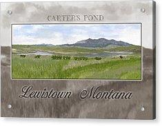 Acrylic Print featuring the digital art Carter's Pond by Susan Kinney