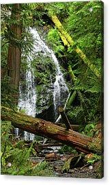 Cascade Falls - Orcas Island Acrylic Print
