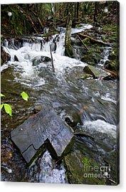 Cascade Falls Stream, Farmington, Maine  -30329 Acrylic Print