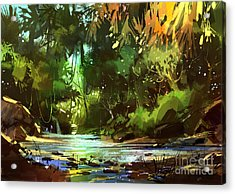 Cascades In Forest Acrylic Print