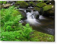 Cascading Brook Rutland Brook Acrylic Print