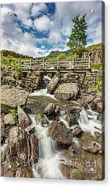 Cascading Stream Acrylic Print by Adrian Evans