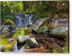 Cascading Waterfall At Sweet Creek Falls Trail Acrylic Print by David Gn