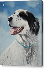 Casey Acrylic Print by Marilyn Jacobson