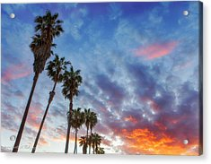 Acrylic Print featuring the photograph Casitas Palms by John A Rodriguez