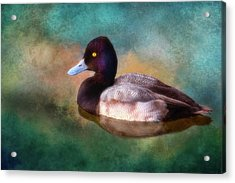 Cast Your Duck Upon The Water Acrylic Print by Joan Bertucci