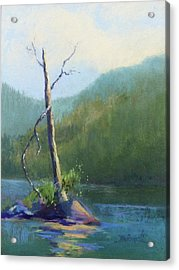 Castle Lake Snag Acrylic Print