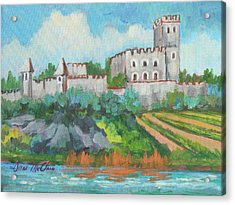 Castle On The Upper Rhine River Acrylic Print by Diane McClary