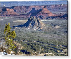Castle Valley Overlook Acrylic Print by Alan Toepfer