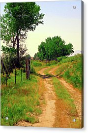 Acrylic Print featuring the photograph Castledale Farm Road by David King
