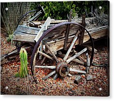 Casualty IIi  Acrylic Print by Julie Dant