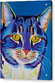 Cat - Lady Spirit Acrylic Print by Alicia VanNoy Call