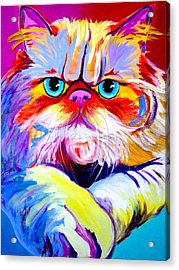 Cat - Tigger Acrylic Print by Alicia VanNoy Call