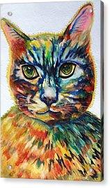 Cat A Tude Acrylic Print