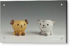 Cat And Dog Acrylic Print