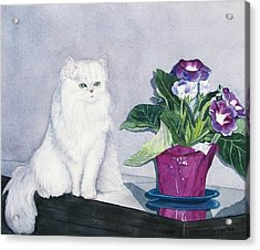 Cat And Potted Plant Acrylic Print by Sharon Farber