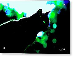 Cat Bathed In Green Light Acrylic Print by Gina O'Brien
