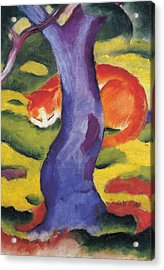 Cat Behind A Tree Acrylic Print by Franz Marc