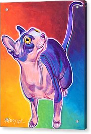 Cat - Bree Acrylic Print by Alicia VanNoy Call