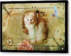 Kitty Cat Composite Art II Acrylic Print