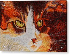 Cat Eye Acrylic Print by Shahid Muqaddim
