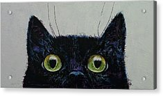 Cat Eyes Acrylic Print by Michael Creese
