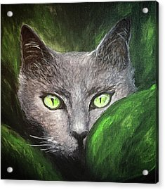 Cat Eyes Acrylic Print