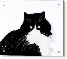 Acrylic Print featuring the digital art Cat Eyes by Yury Bashkin