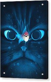 Cat Fish Acrylic Print by Nicholas Ely