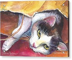 Cat In A Bag Painting Acrylic Print