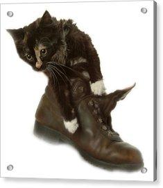 Cat In Boot Acrylic Print