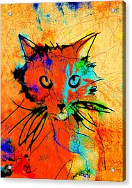 Cat In Red And Yellow Acrylic Print