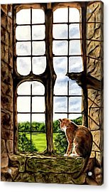 Cat In The Castle Window-close Up Acrylic Print