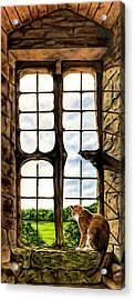 Cat In The Castle Window Acrylic Print