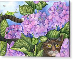 Cat In The Garden Acrylic Print by Mindy Lighthipe